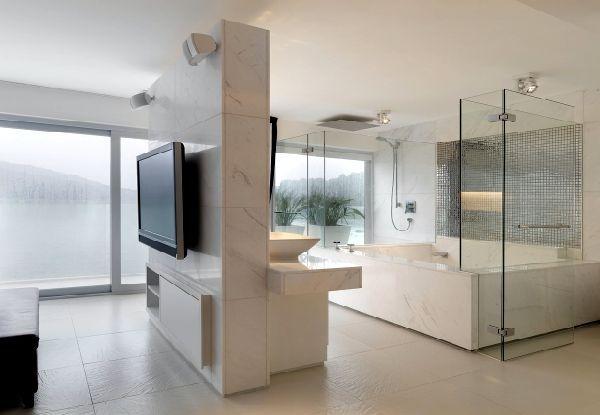 bathroom / bedroom open concept
