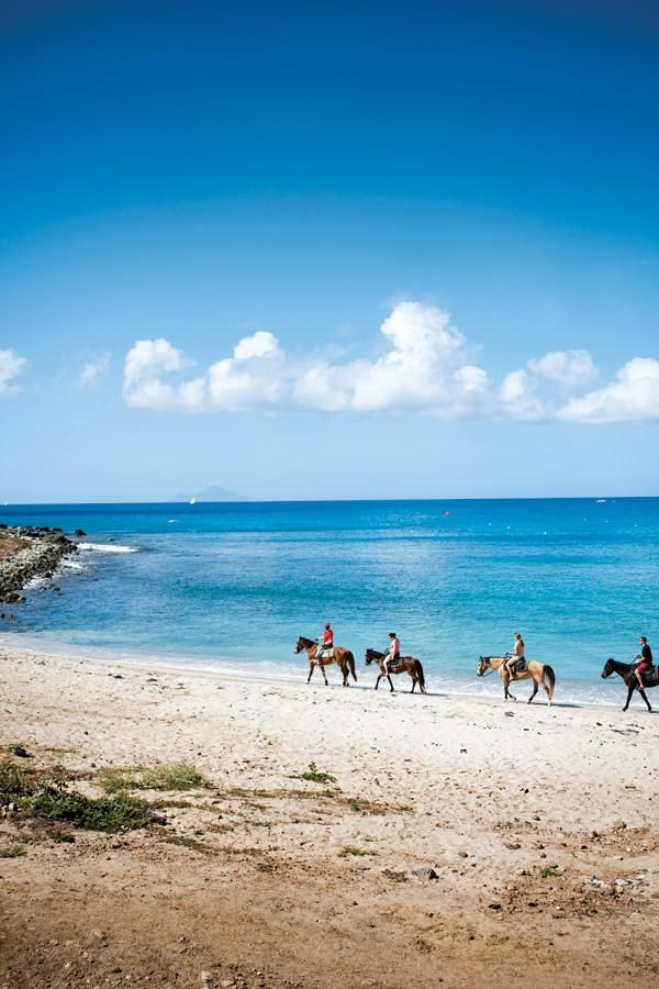 Best Secret #Attraction ~ Seaside Nature Park, St. Maarten #Caribbean