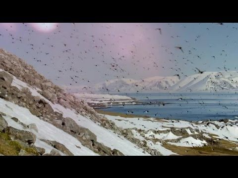 Earths Greatest Spectacles Ep 2 - Svalbard