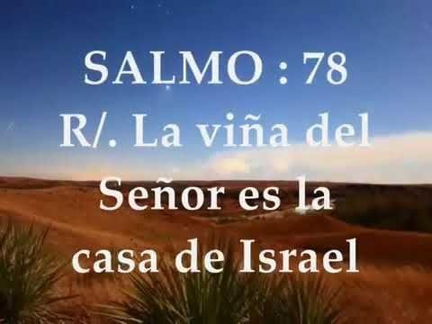 El Rincon de mi Espiritu: Evangelio del día y Lecturas de hoy domingo 8 de o...