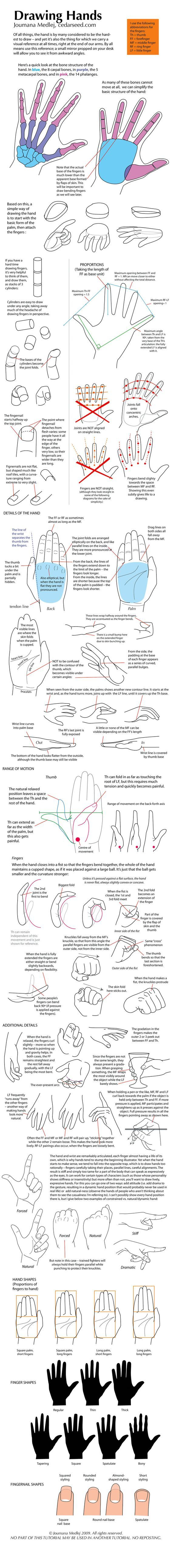 hand tutorial, great lessons for drawing hands.: