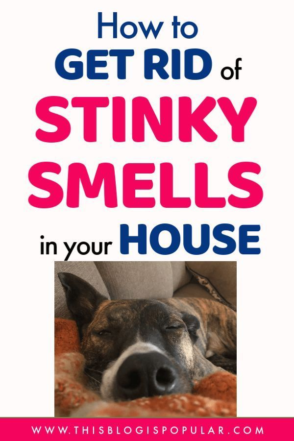 How To Get Rid Of Stinky Smells In Your House Towels Smell