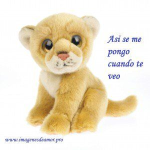 9 Imagenes tiernos peluches con frases - http://www.imagenesdeamor.pro/2014/08/9-imagenes-tiernos-peluches-con-frases.html