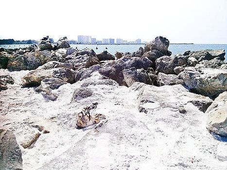 FLORIDA_Usa 21d by Coronalux Coronalux