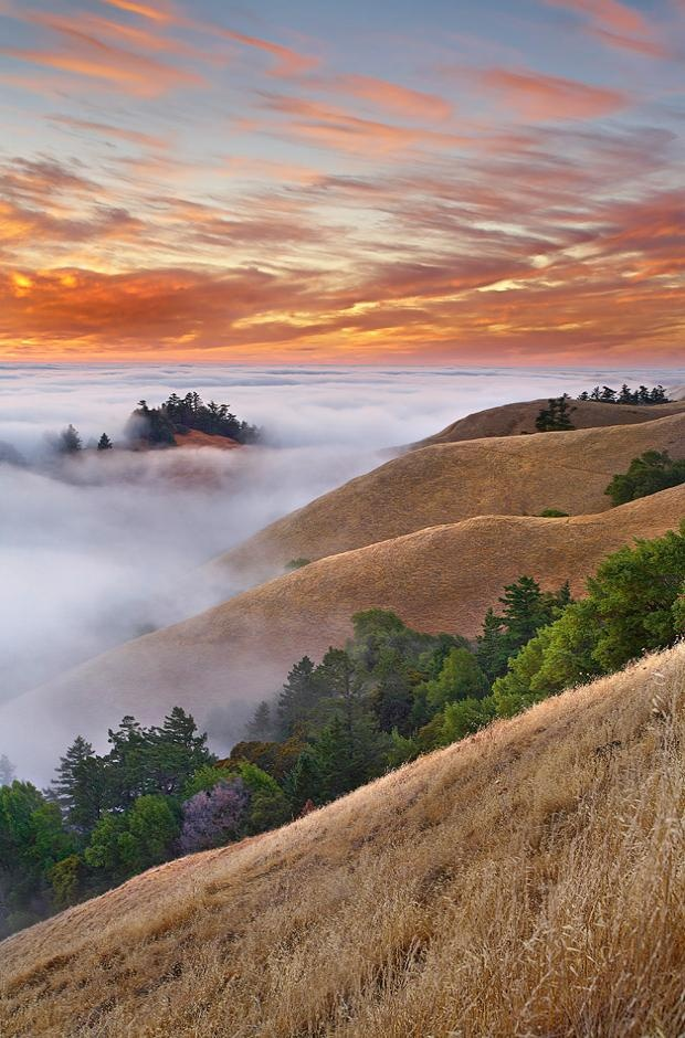 Mt Tamalpais, just north of SF, cool country! Absolutely gorgeous!