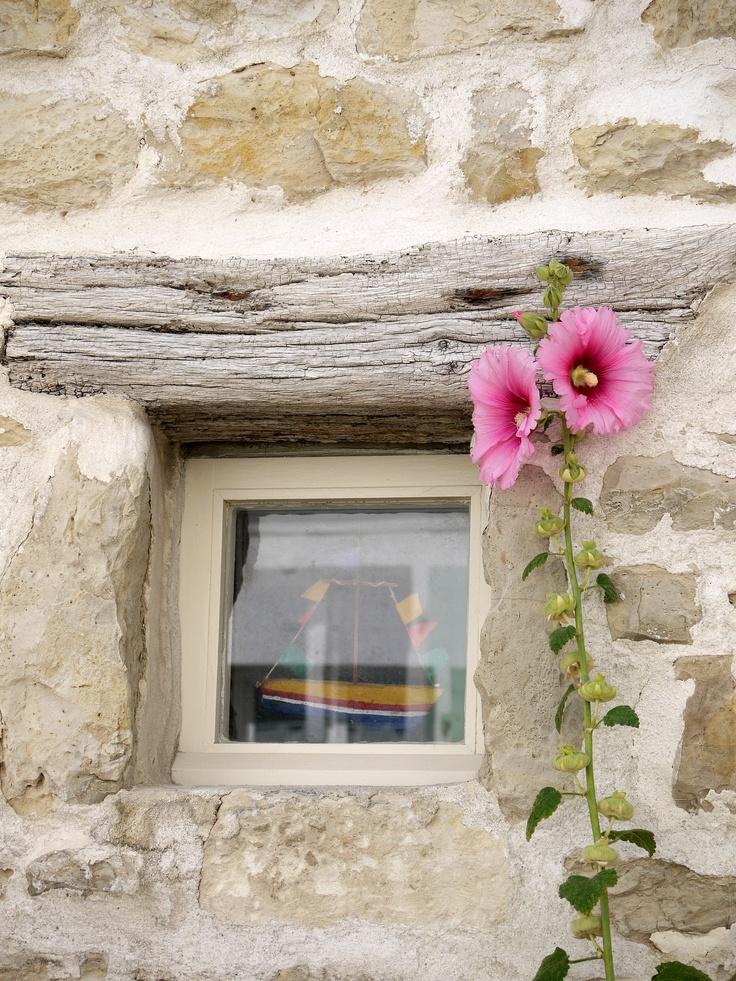 Hollyhocks by the window - Ile de Re