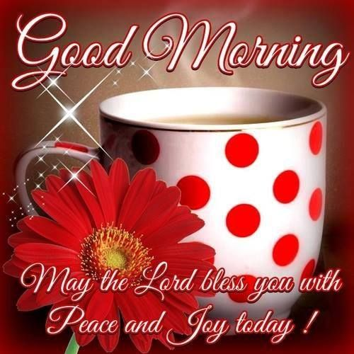 Good Morning. May the Lord bless you with peace and joy today! #december good morning quotes flower polka dot