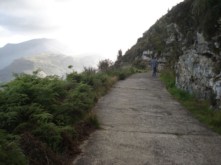 On the eastern slopes of Table Mountain.