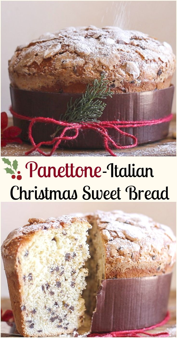 Panettone, an Italian Christmas sweet bread, an easy delicious yeast bread filled with raisins and candied fruit