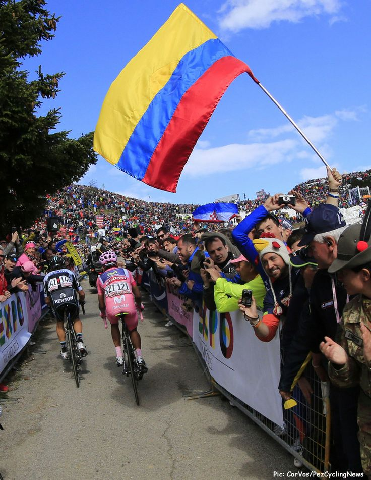 PezCycling News - Giro'14 St.20: Australia may have won the stage and dominated the first week but it's the Colombians who have been the real dominators of this Giro. 1 & 2 on GC, pink, white and blue jerseys and 4 stage wins for the Colombians have had the South American fans going crazy. Pic:CorVos/PezCyclingNews