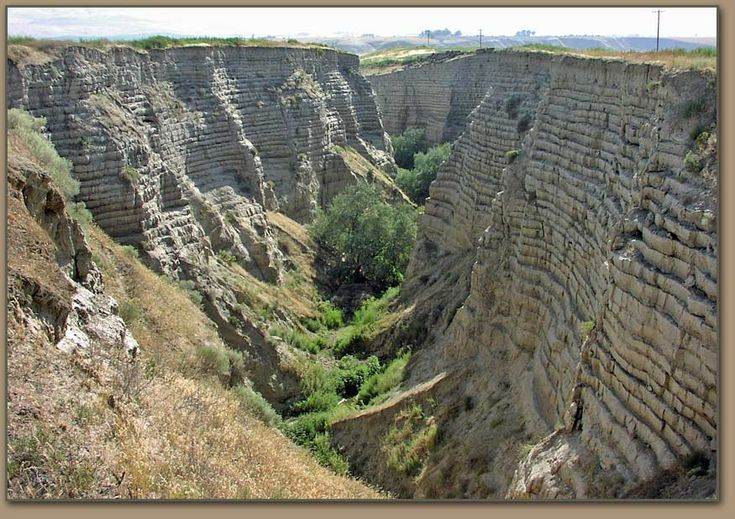 Lake Lewis Feature: rhythmites & volcanic ash layers exposed in Burlingame Canyon (Ravine) (private property near Touchet, WA) provided evidence of at least 40 large Lake Missoula Ice Age Floods in Walla Walla Basin to geologists in the early 80s. -Bruce Bjornstad photo