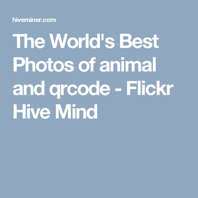 The World's Best Photos of animal and qrcode -  Flickr Hive Mind