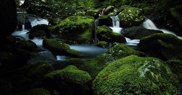 Triple Falls, Lamington National Park, South-East Queensland, Australia