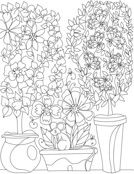Adult Coloring Pages Book Sheets Colouring Pencil Drawings Flowers Garden Colour Doodle Binder