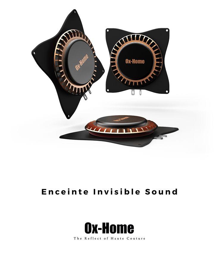 Notre solution d'enceinte Invisible Sound permet de transformer toute surface en haut-parleur de qualité.  Notre système vous offre un son optimal de manière totalement invisible. Nos haut-parleurs Invisible Sound  peuvent être collés ou vissés sur n'importe quelle surface afin de la transformer en enceinte.  Nous vous proposons deux modèles différents : l'enceinte IS 25, d'une puissance de 25 Watts, et l'enceinte IS 10, de 10 Watts.  Toutes nos enceintes présentent une impédance de 8 Ohms.