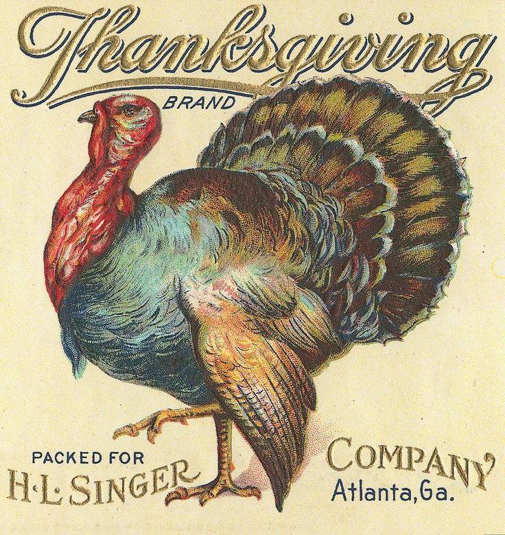Sisters' Warehouse/turkey