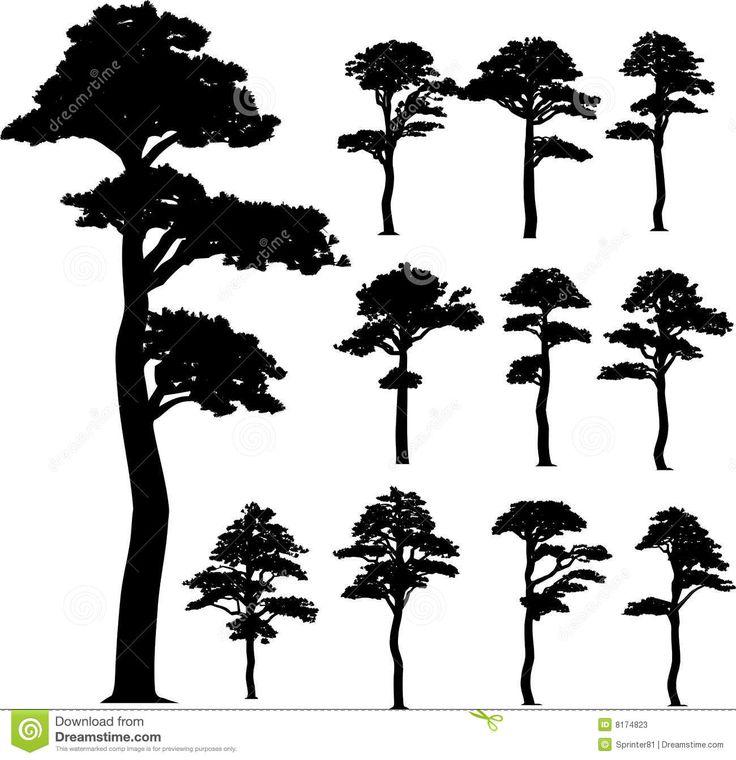 Best 20 kiefer baum ideas on pinterest - Baum malen ...