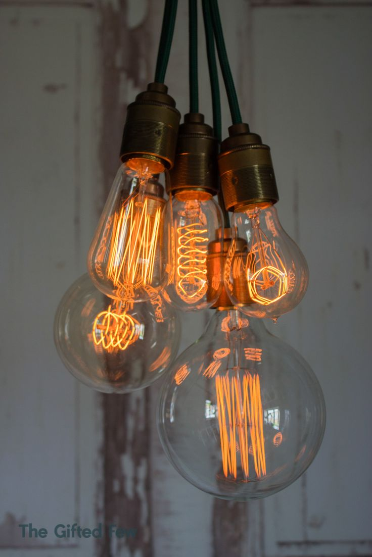 lightbulb bulb edison decorative lightslight - Decorative Light Bulbs