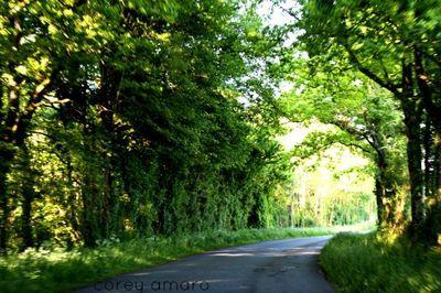 Taking the back roads thru France