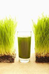 http://altmedicine.about.com/od/Juice/a/Barley-Grass.htm