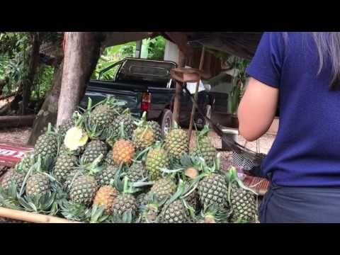 Fruit along road Uddon tourist site