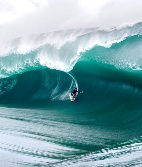 wslofficial: Beauty in the beast. Surfer | Pato Teixeira Photo...