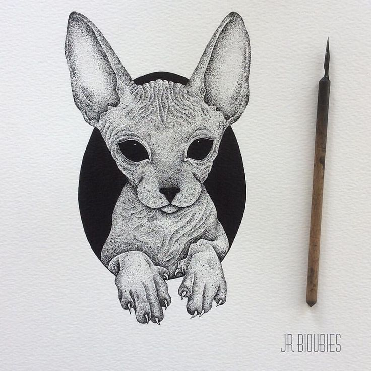 pinterest // lilyxritter Illustrative blackwork tattoo
