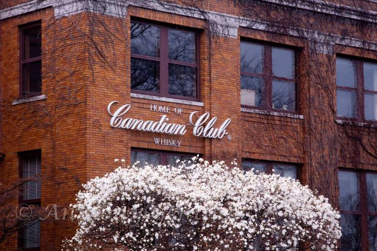 Canadian Club Heritage Center - Windsor Ontario #Canadian #club #Whisky #Al #Capone #prohibition #anthonygentilephotography