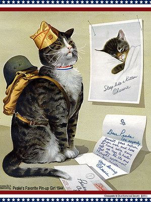 82 Best Cats And Wwii Images On Pinterest World War Two