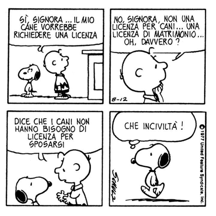 Charlie Brown: Sì, signora... Il mio cane vorrebbe richiedere una licenza. No, signora, non una licenza per cani... Una licenza di matrimonio... Oh, davvero? [A Snoopy] Dice che i cani non hanno bisogno di licenza per sposarsi. | Snoopy: Che inciviltà!