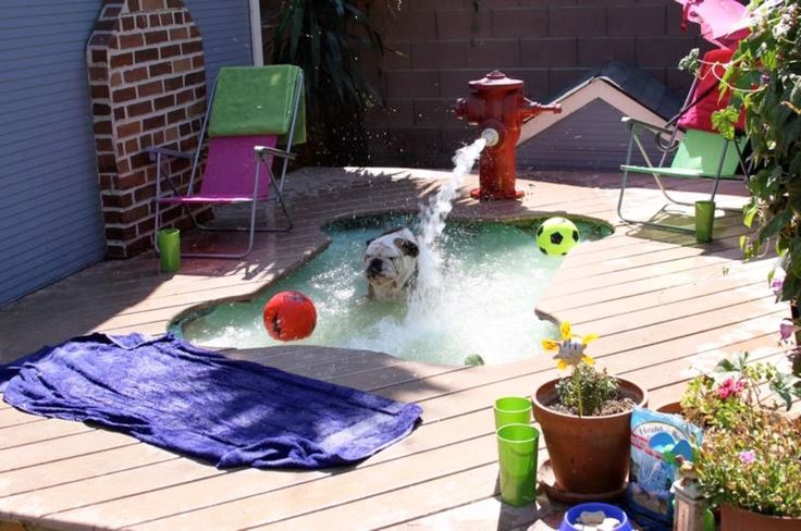 Cost: $150 (fire hydrant) + $50 (pump kit) = $200 for this dog pool decoration.