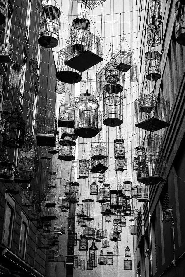 画像 : シドニーのビジネス街のビルの間に浮かぶ大量の鳥かごについて - NAVER まとめ