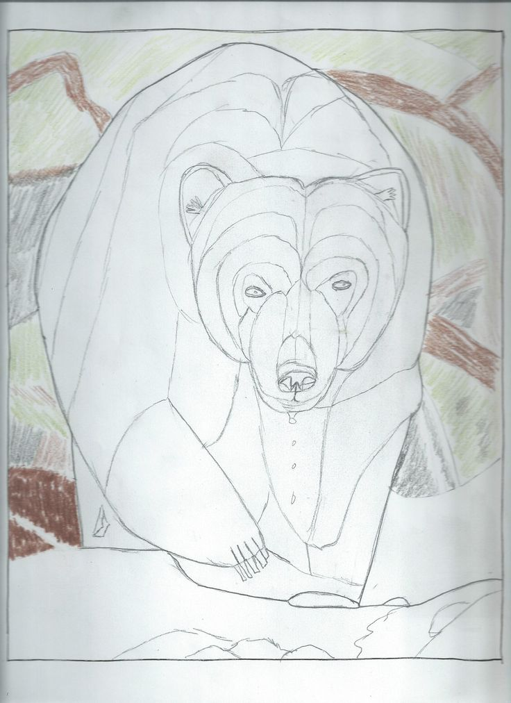 best touching spirit bear ideas book projects  another senior project touching spirit bearsummer