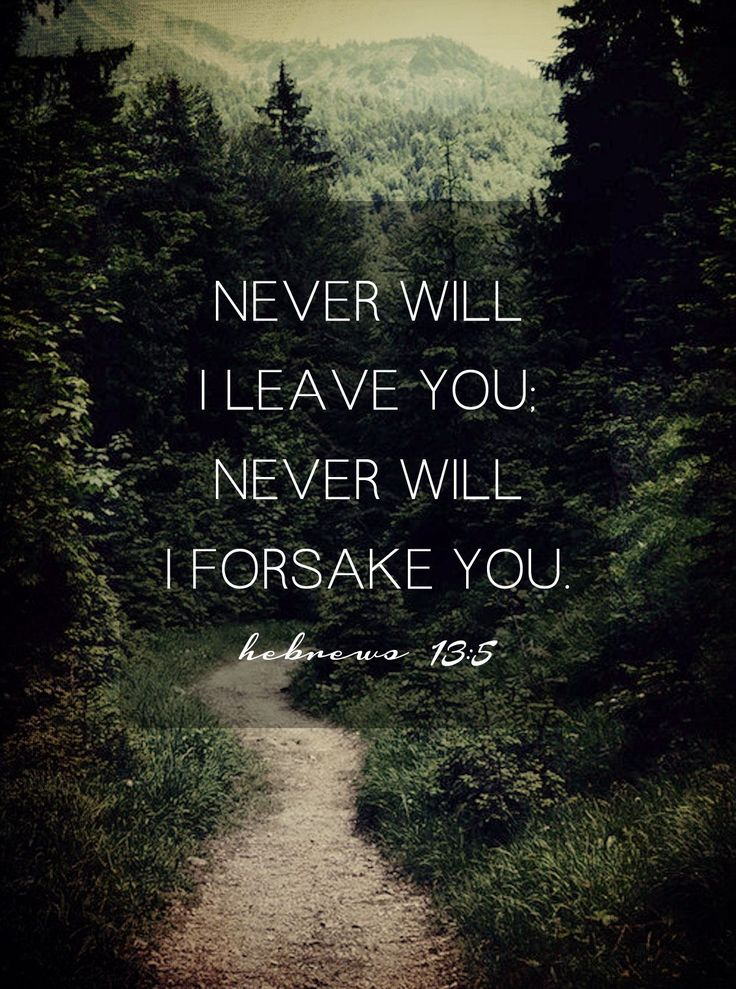Never will He leave us. God is faithful, if no one else is. Hebrews 13:5 #Faith #Scripture