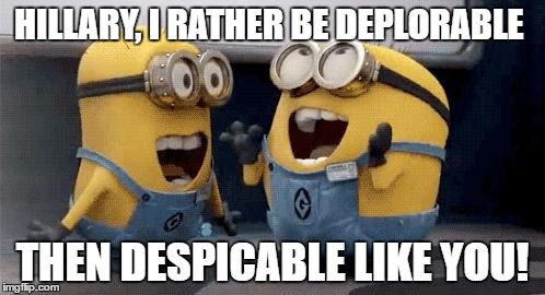 Image result for deplorable me minions