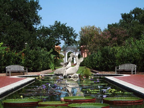 c1f0aa1ed7f6c02923616db6fb111b89 - City Park Botanical Gardens Plant Sale