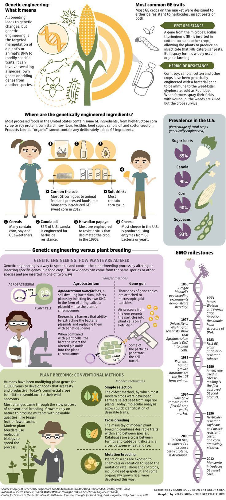 ABCs of GMOs | Local News | The Seattle Times