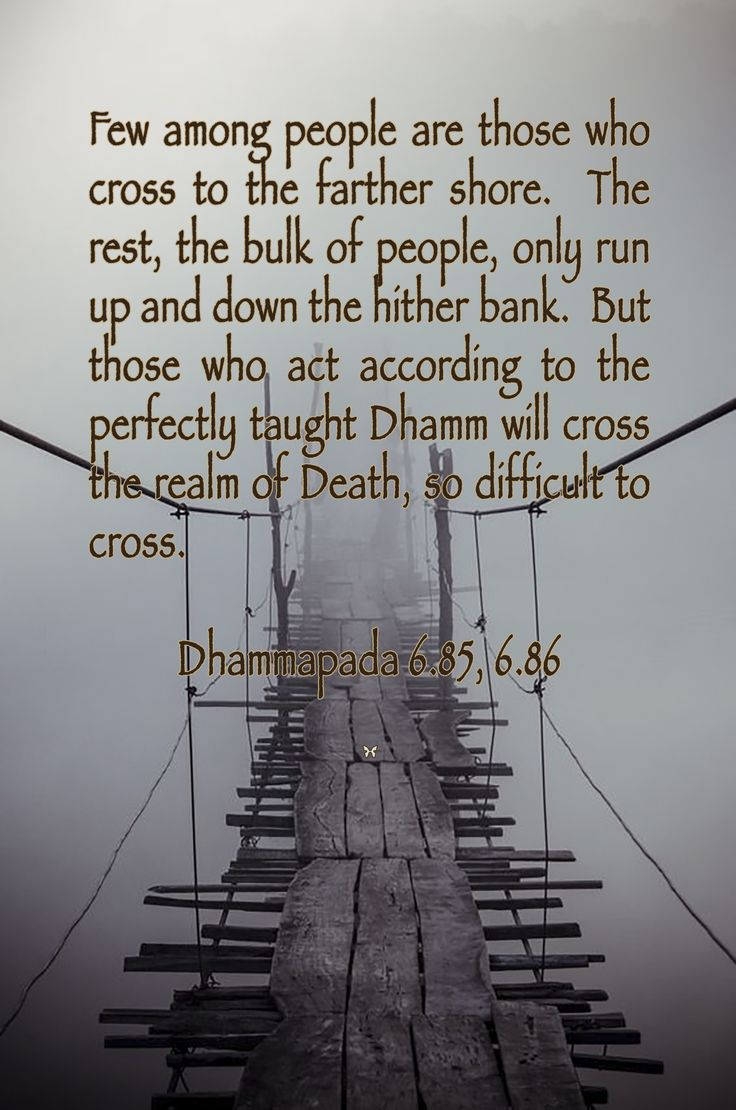 Few among people are those who cross to the farther shore. The rest, the bulk of people, only run up and down the hither bank. But those who act according to the perfectly taught Dhamma will cross the realm of Death, so difficult to cross.  ♡ Dhammapada 6.85, 6.86