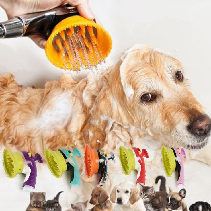 Find More Dog Accessories Information About Pet Dog Cat Bathing Device  Shower Head Pet Dog Bathtub