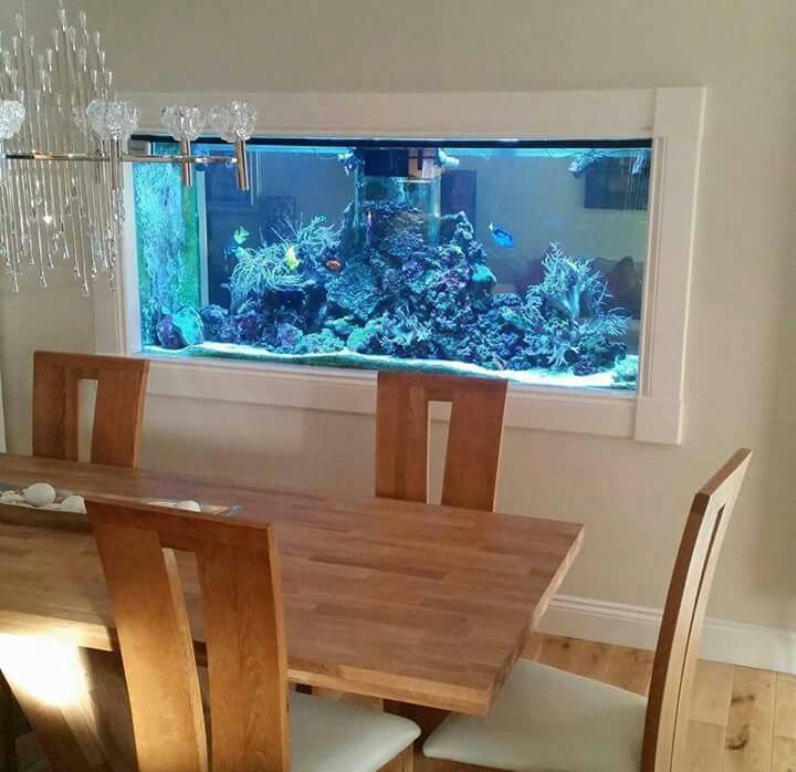Home Aquarium Design Ideas: Pin By Noel Fossette On Aquariums