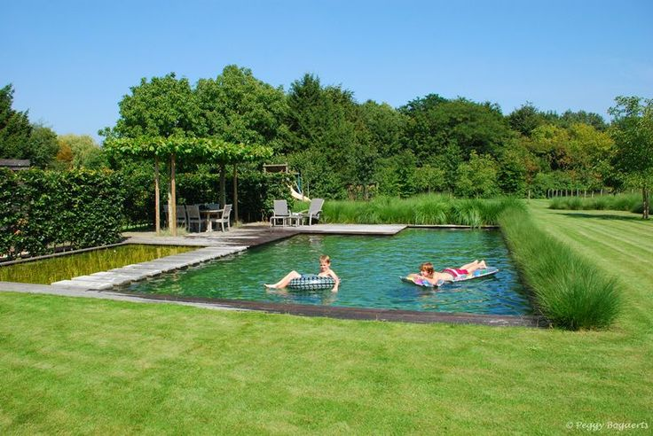 Zwemvijver in de tuin - Swimming pond in the garden backyard <3 Fonteyn