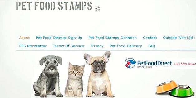 How Do You Qualify For Food Stamps In Massachusetts