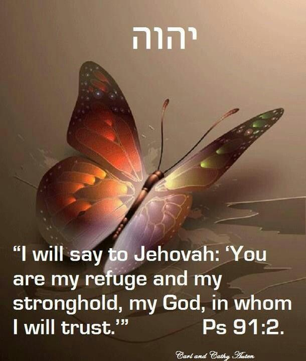 """""""I will say to Yahuah: """"You are my Refuge and my Stronghold, my Elohim, in Whom I will trust"""" Psalm 91:2"""