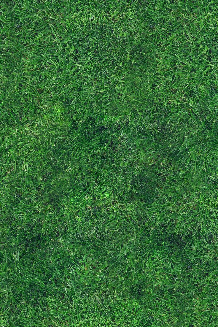 green grass garden photography grass wallpaper garden photography photography wallpaper green grass garden photography grass