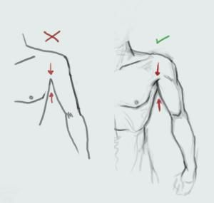 Great simple mistake fixing to improve your anatomy for arms and torso.