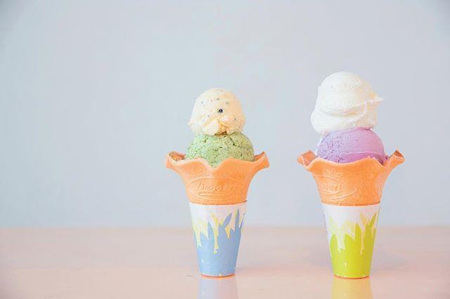 伊豆大島にある「島のアイスクリーム屋 トリトン」は、大島牛乳を使ったアイスクリームの専門店。 明日葉や安納芋など伊豆大島さんの食材を中心に、常時20~30種のフレーバーがそろいます。 素材の持つ風味を活かすために砂糖は控えめ。伊豆大島を訪れたら、ぜひ立ち寄ってみてくださいね。 #ことりっぷ #ことりっぷマガジン #島がよんでる #東京 #伊豆大島 #島のアイスクリーム屋トリトン #トリトン #大島牛乳 #アイスクリーム #明日葉 #安納芋 #島 #島旅 #夏 #夏旅 #旅行 #trip