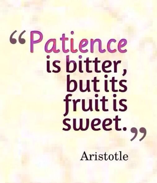 Oh that Aristotle knew a thing or two, god bless him. #aristotle #aristotlequotes #patience