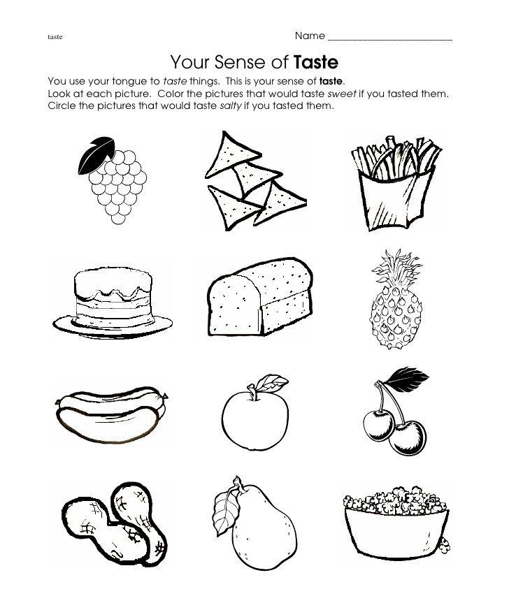 taste worksheet
