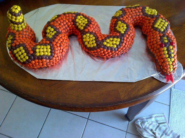 Childs Snake Cake