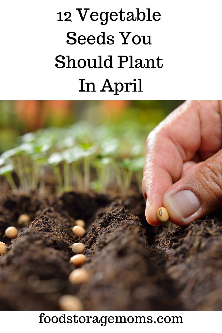 Are You Ready To Plant Some Vegetable Seeds In April There Is